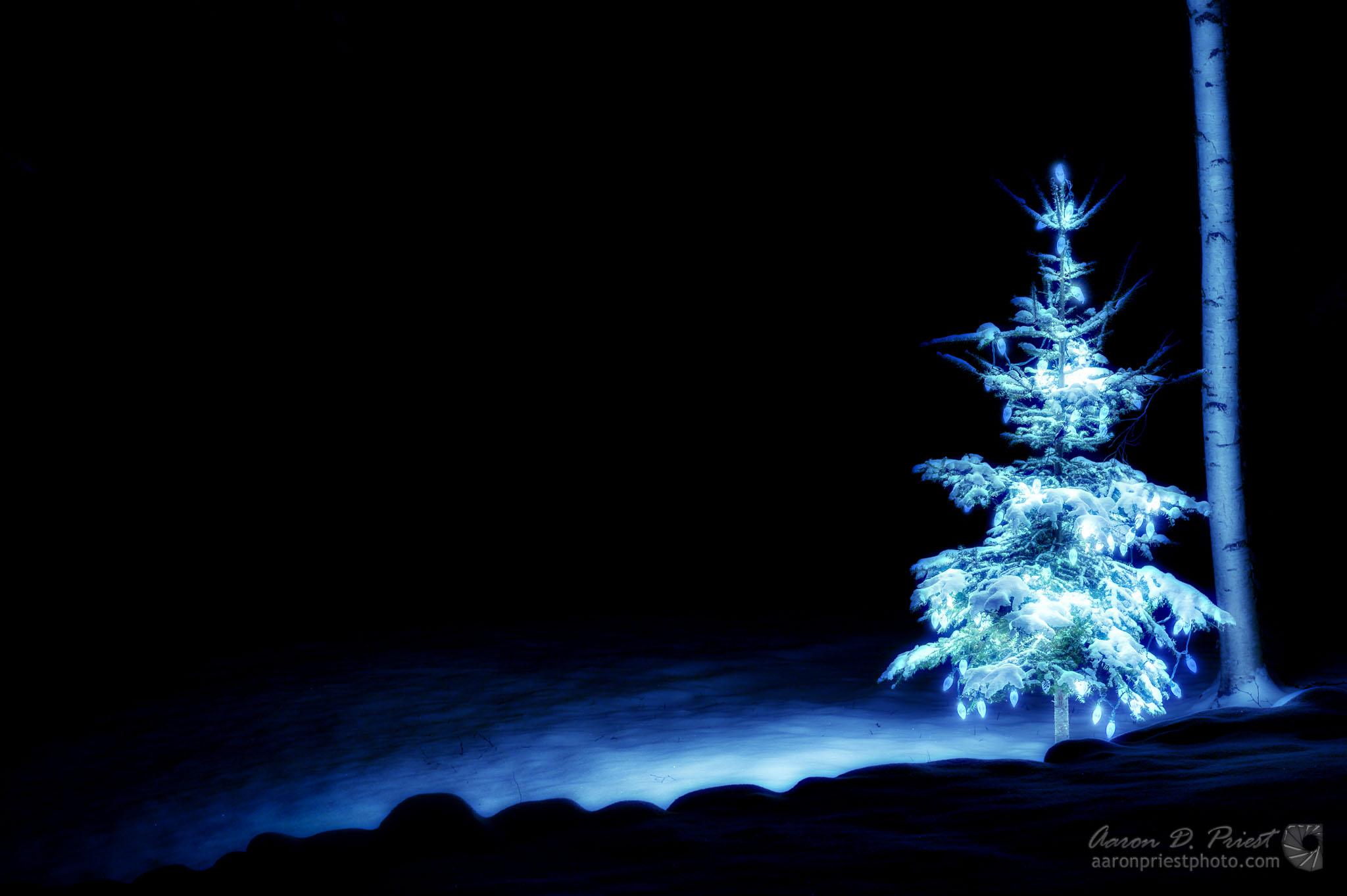 2011-12-25-57404.jpg