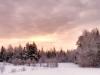 2013-01-17-106845.jpg