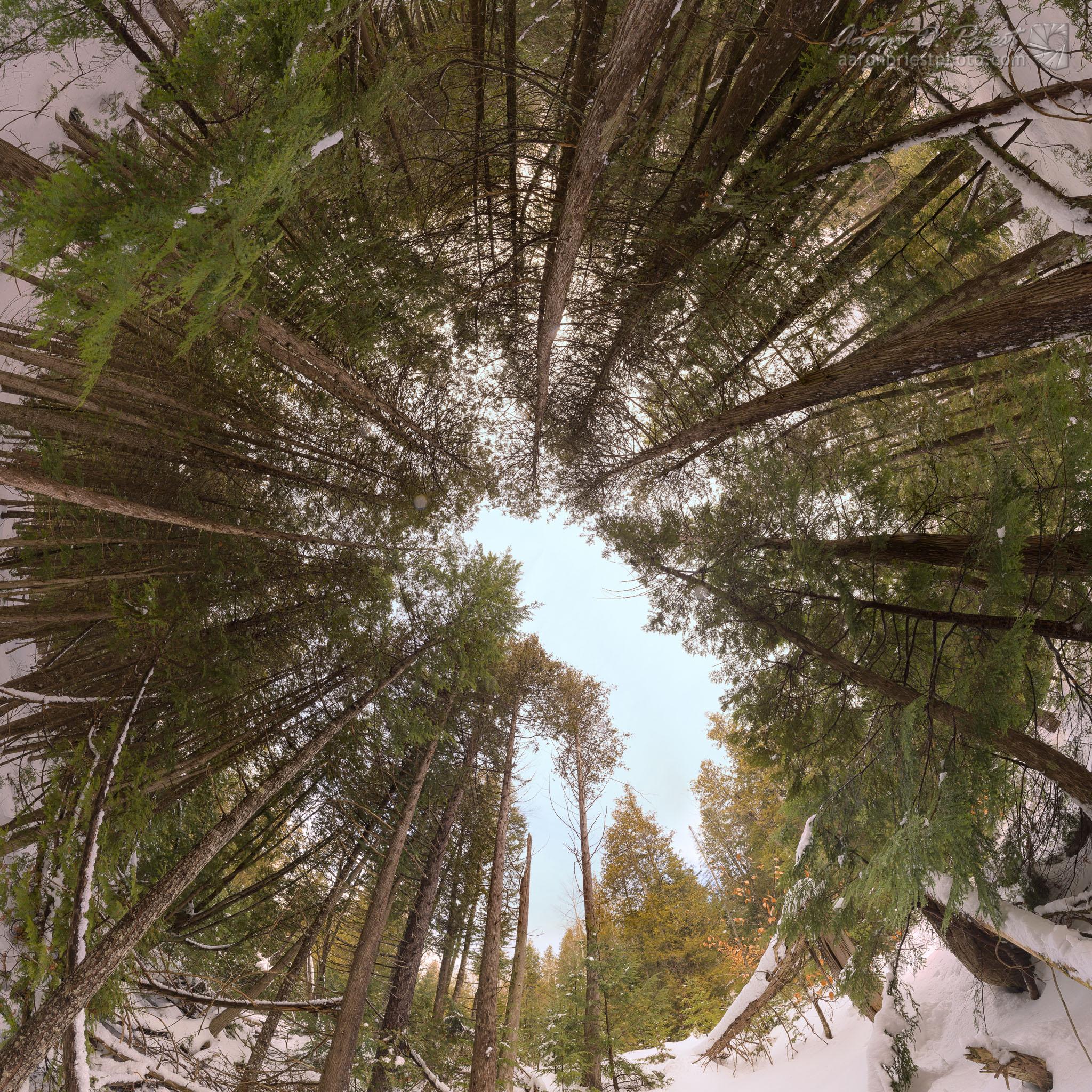 2013-01-20-109107-4 Sky.jpg
