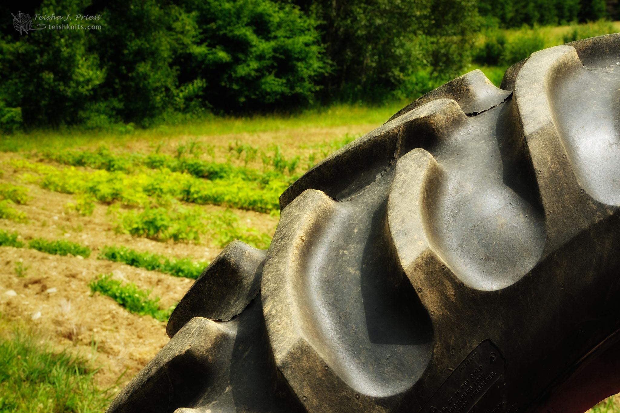 2011-07-14-40654.jpg