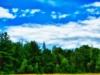 2011-07-14-40682.jpg