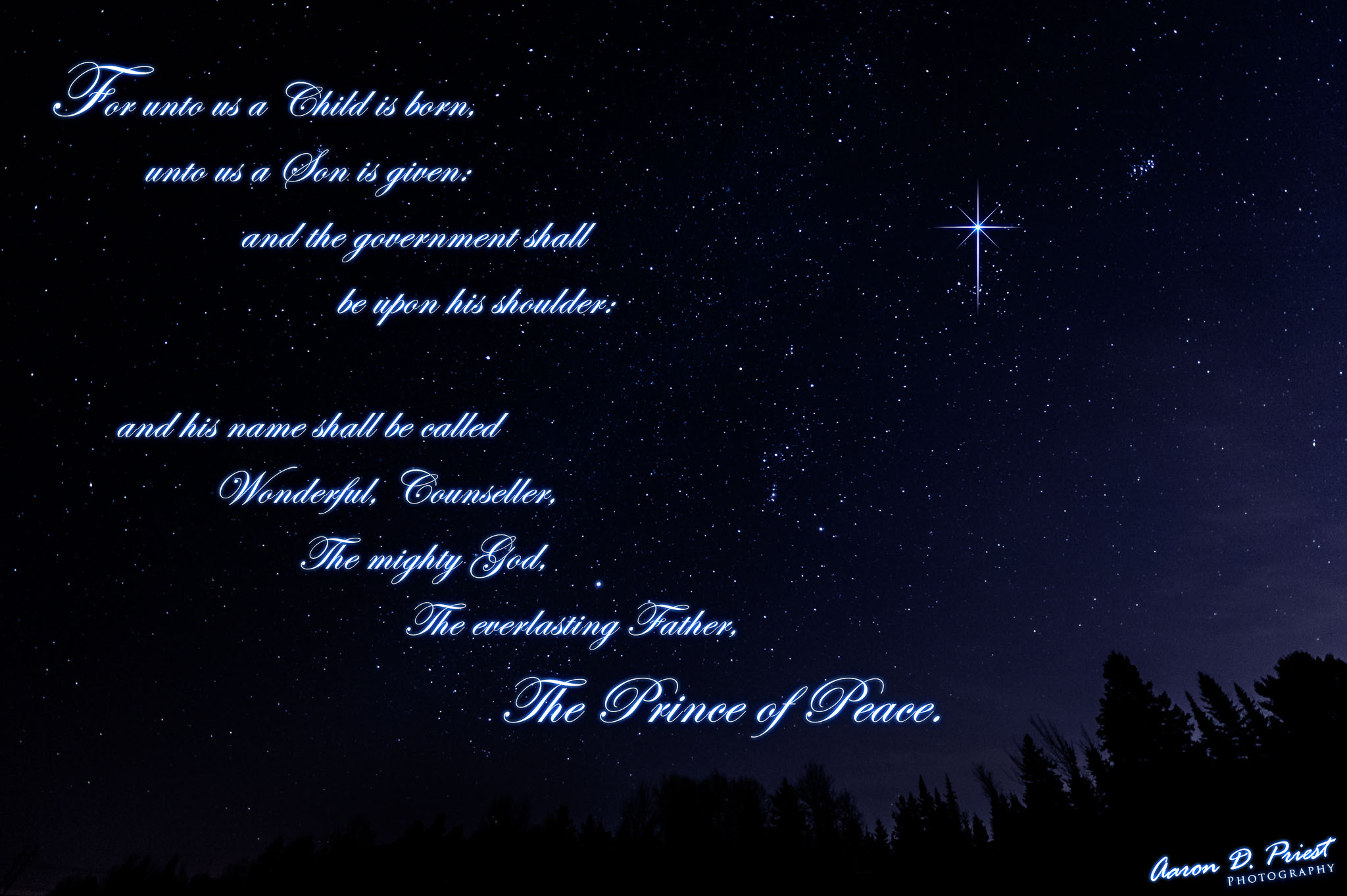 2012-12-14-103779 Christmas.jpg