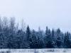 2013-01-16-104137.jpg