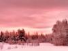 2013-01-17-104843.jpg