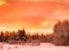 2013-01-17-105571.jpg