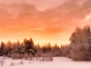 2013-01-17-106019.jpg